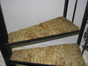 504 Standard Carpeted Tread